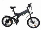 36V 250W 영웅 전기 자전거 가격