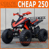 Manual de barata 250cc ATV para o desporto