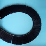 Balai en nylon dur de mouvement circulaire de porte de filament avec le prix concurrentiel
