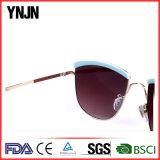 Óculos de sol profissionais China da venda por atacado da personalidade da alta qualidade de Ynjn do fabricante (YJ-F12837)