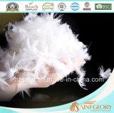 Consolador blanco de la pluma del ganso de la manta económica de la pluma