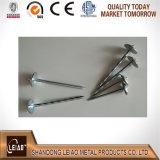 Parapluie galvanisé de haute qualité de la tête de clou de toiture