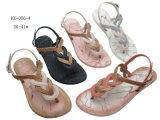 Últimas sapatos femininos para chinelos e sandálias de PVC Flip-Flop
