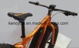 """26 """" محرّك منتصفة درّاجة كهربائيّة مع [بفنغ] [مإكس] [سستم/] [إ] درّاجة لأنّ أوروبا [مركت/] [إ] درّاجة سمين ([س-2631])"""