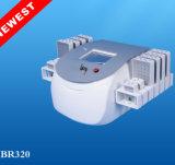Laser Lipo 200MW verdoppeln Wellenlänge Lipolaser, das Maschine abnimmt. Laser Lipo