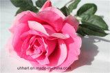 Einzelne Stamm-Qualitäts-künstliche Rosen-Blume für Dekoration