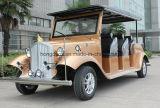 6 мест для автомобильной промышленности электродвигатель электрического малых автомобилей
