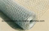 Cerca de alambre de pollo de la tela metálica de Sailin