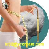 Het farmaceutische Sulfaat van Albuterol van het Sulfaat van Salbutamol van het Ingrediënt voor het Verlies van het Gewicht