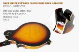 Mandolino acustico Maf010 di stile del corpo F dell'acero laminato colore di Aiersi
