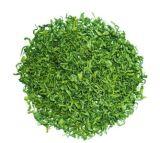 飲料および飲み物のための即刻の緑茶の粉