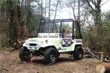 250cc ATV, 4 colpi automatici ATV elettrico per gli adulti