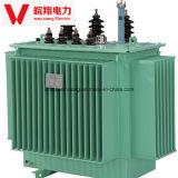 Trasformatore elettrico di Immersedtransformer/Transformer/10kv dell'olio