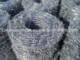 Окунутый горячий гальванизированная/нержавеющая сталь двойника закрутки колючая проволока