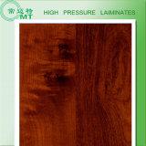 Panneaux stratifiés de douche/feuilles stratifiées à haute pression