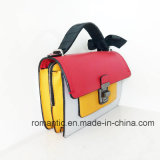 레이스 (NMDK-060202)를 가진 최신유행 여가 디자인 여자 PU 핸드백