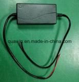 de Slimme Lader van de Batterij van het Lood 14.7V 3A Zure