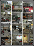 Modernes Sofa-Möbel-echtes Leder-Sofa (SBO-3920)