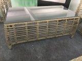 Самомоднейший напольный ротанг/Wicker мебель сада отдыха софы (TG-6009)