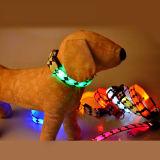 Fonte de piscamento recarregável do animal de estimação do colar de cão do USB do diodo emissor de luz para a promoção