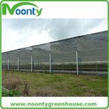 Réseau vert et noir bon marché d'ombre de Sun de HDPE