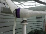 generatore di vento di alta efficienza di 200W 12V/24V per il paesaggio da vendere
