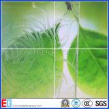Frost Glass, протравить кислотой стекло, Obscure стекло (EGFG004)