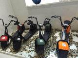 Mag City Scooter 80km Gamme Motos électriques à deux roues