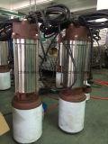Pompa ad acqua sommergibile delle acque luride con l'interruttore di galleggiante, STAZIONE TERMALE 1.1kw