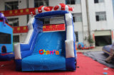 Ozean World Theme Inflatable Water Slide für Water Games (CHSL560)