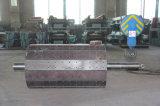 Puleggia magnetica/timpano/rullo del Rct per la centrale elettrica ferromagnetica isolata della biomassa del truciolo dei materiali/zucchero/