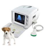 Tierarzt-/Tierarzt-beweglicher Ultraschall-Scanner - Martin
