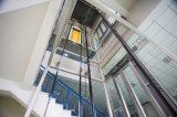 Elevatore ed elevatore diretti del passeggero dell'OEM Vvvf con l'automobile di vetro dell'acciaio inossidabile