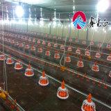 최신 직류 전기를 통한 Prefabricated 가벼운 강철 구조물 층 공급 디자인 판매를 위한 상업적인 닭장