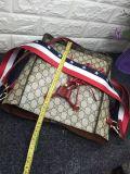 Sacchetto alla moda della signora Handbag Casual Bag Promotion delle donne della nappa (WDL0092)