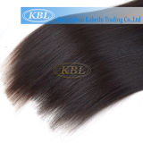 Brazilian Remy Virgin Hair, Bulk Cabelo Humano