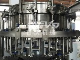 Installation de transformation carbonatée de l'eau de gaz de bouteille en verre