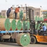 ASTM B 498 Stahldraht der Kategorien-B der Schichts-ACSR