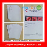 Repalce Sensitive Film Digital Dry Inkjet Medical Rayon X Film