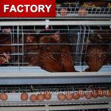 Cage automatique de vente chaude de couche de poulet à vendre à Philippines