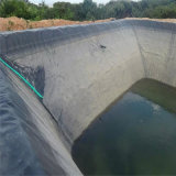 Fish Farm Pond Liner feuille ASTM géomembrane HDPE