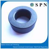 알파철 영원한 소결한 자석은 /Ceramic 모터 반지를 둥글게 된다