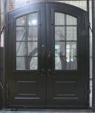 Двери входа ковки чугуна для рекламы