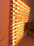 La nuit de clignotement d'émulation d'E27 B22 DEL de flamme de lampe de flamme d'effet de la lumière d'incendie d'ampoule neuve de maïs allume l'année 1900K neuve