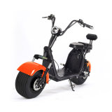두 배 건전지 성숙한 전기 기관자전차 E 스쿠터를 가진 Harley 전기 스쿠터