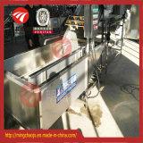 Wasmachine van de Zak van het Voedsel van het Fruit van de grote Schaal de Plantaardige