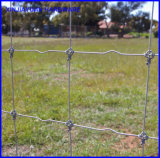 Giuntura di cerniera galvanizzata che recinta la rete fissa del bestiame da vendere
