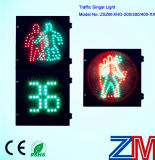 Feu de signalisation piétonnière Animated de DEL avec le mètre de compte à rebours