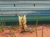 Nouveau Style de clôture de l'usine vert du panneau en acier