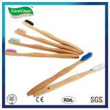 Le charbon de bois de Bambou adulte organique de brosse à dents brosse à dents de bambou